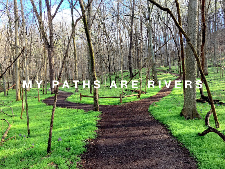 my paths are rivers